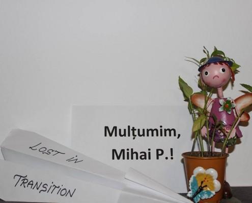 Mihai P.
